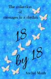 18 by 18🦋 cover