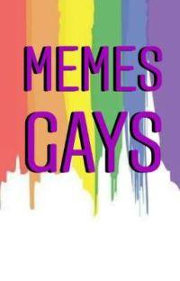 Memes Gays  cover