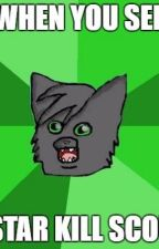 Warrior Cat Memes (T H R E E) by EclipseTheRouge