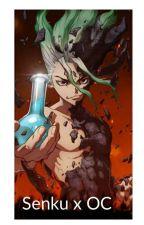 Dr. Stone Senku x OC by MiniChewiereads