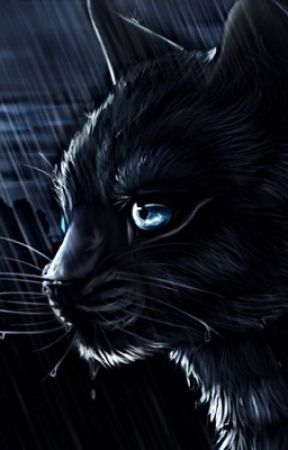 | | R a i n y  d a y s| | ( Warrior cats ) by MoonravenTheWarrior