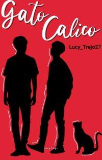 Gato Calico ||JimSu|| cover