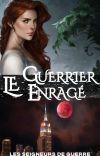 LES SEIGNEURS DE GUERRE, Tome 4 : Le Guerrier Enragé cover