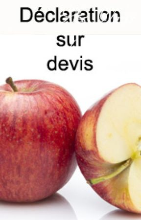 Déclaration sur devis by Shali-Shali