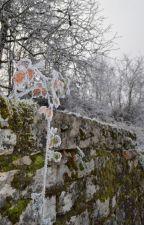 Verre glacé by Nelle_EB