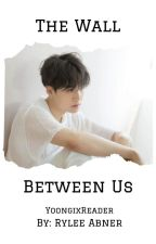 The Wall Between Us (YoongixReader) by ParadoxofParoxysms