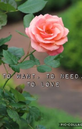 To Want, To Need, To Love by SeaweedGirl24