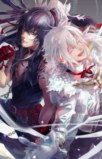 28 nap D. Gray Man  cover