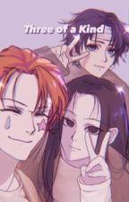 Three of a Kind || Illumi x Hisoka x Chrollo x reader by cece_im_cool