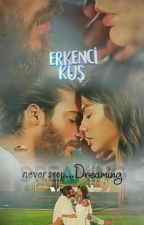 Erkenci Kus, The Continuing Story by DebScott3