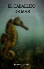 El caballito de mar by El-Sak