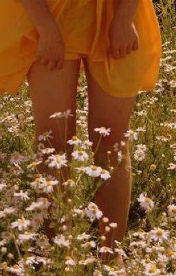 dành riêng cho choi jinri, đoá hoa đẹp nhất trên d