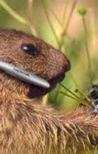 Het geheim van de albert hamsters by tessy28
