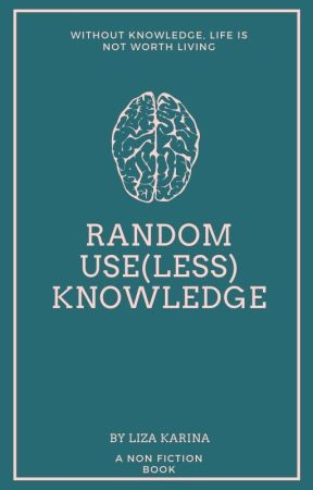 Random Useless Knowledge by loozeey
