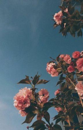 falling petals ♡ taekook by taekookflufff