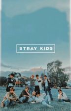 Stray Kid's 9th member by Stawesomest
