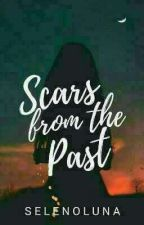 Scars From The Past by I_Want_IceBear