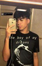 Boy of my dreams <<Mattia Polibio🦖 by mattiaswhore