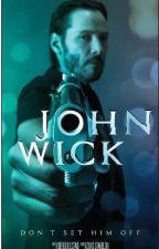 John Wick (John Wick x Reader) by LayceJ25