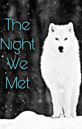 the night we met (discontinued) by tommo_the_tease27