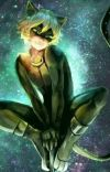 But I'm just a Friend. Chat Noir x Reader (Miraculous Ladybug)  cover