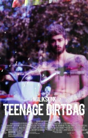 Teenage Dirtbag || Zayn Malik Version by malikskink