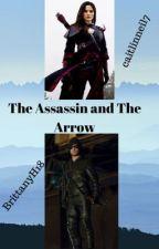 The Assassin and The Arrow by caitlinneil7