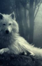 The Wolf Within; The Hybrid Alpha by Chelsealeehx