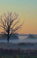 de stille vlakte (1 delig verhaal) by AnoukVanderWerf