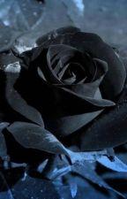 Black Rose by AkiSalcedo