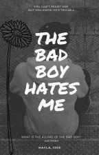 The Bad Boy Hates Me/jolinsky/ by hayla_1305