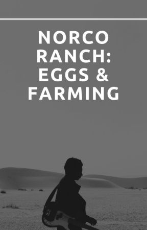 Norco Ranch: Eggs & Farming Stories by haveavoice