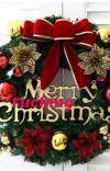 Merry F*cking Christmas - Terminée [en correction] cover