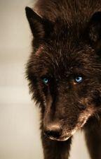 Wolftale AM by MultiverseSquid