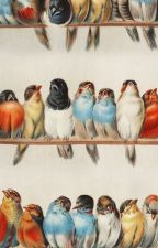 Nas Asas Do passarinho by IndianaraSilva206