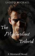 The Malevolent Tribrid by mic-mac