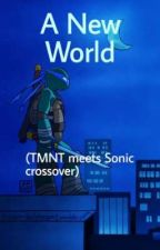 A New World (TMNT meets Sonic crossover)  by JackalGirl_848