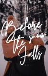 Before The Snow Falls | Holiday Novella cover