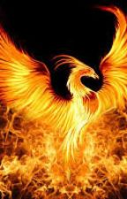 Red Phoenix( Camp half blood) by _phxnetaltras_
