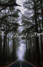 The Magical Barrier  by sammysamsamanta