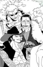 One piece cats x reader by qtHaru3