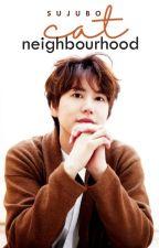 Neighbourhood Cat  || Kyuhyun by sujubo