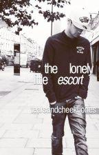 the lonely little escort by tearsandcheekbones