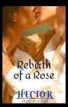 Rebirth of a Rose cover