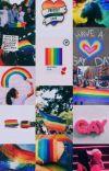 LGBT tanışma anketii cover