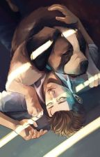 Why You? Connor x Reader by RiverSong1996