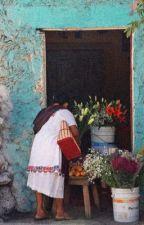 To kill a demon    a tpn x reader fanfic    by uwanosora
