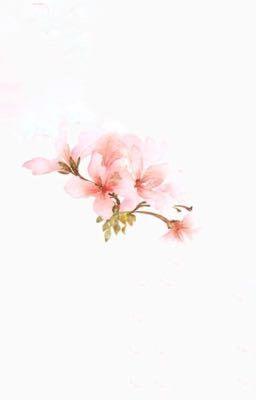Đọc truyện [TaeJae] [Pistil Verse] Vô Cùng Hoa