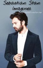 Sebastian Stan Imagines by iamakindofwriter