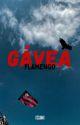 Gávea - Flamengo by itscammi
